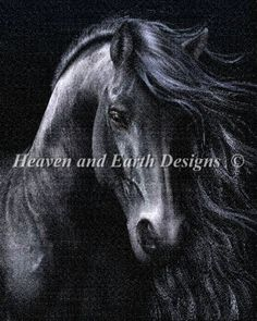 The Black - Painting by Laurie Prindle. Chart design by Michele Sayetta for Heaven and Earth Designs. Free Cross Stitch Charts, Dmc Cross Stitch, Fantasy Cross Stitch, Cross Stitch Letters, Cross Stitch Books, Cross Stitch Samplers, Cross Stitching, Cross Stitch Stocking, Stitch Shop