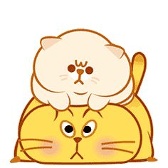 ideas for cats wallpaper iphone fat Cute Love Gif, Cute Cat Gif, Cute Fat Cats, Cool Cats, Cute Bear Drawings, Cartoon Drawings, Cute Love Cartoons, Cute Cartoon, Free Animated Icons
