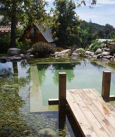 Piscinas naturales: ecológicas y sin químicos.