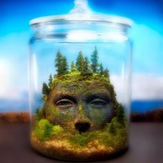 Goddess head in the centre of the aquarium. Find a similar white ceramic head and let algae grow on it.