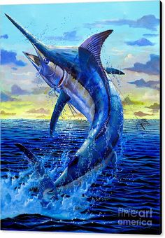 Marlin Canvas Print featuring the painting Grander Off007 by Carey Chen