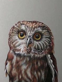Painted Rocks, Hand Painted, Realistic Paintings, Diy Games, Museum Of Modern Art, Animal Paintings, Diy Kits, Landscape Paintings, Owls