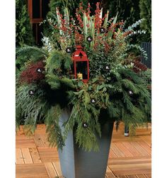 How to make a festive lantern planter for your winter garden | Container Gardening | bcliving