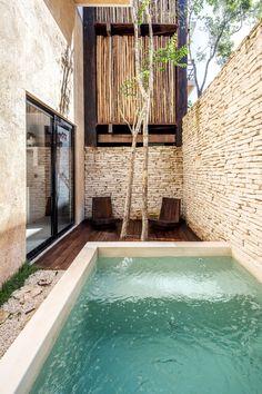 Gallery of Tribu Apartments / Arista Cero - 5 Small Swimming Pools, Small Pools, Swimming Pools Backyard, Swimming Pool Designs, Lap Pools, Indoor Pools, Pool Decks, Landscaping Shrubs, Design Patio
