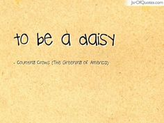 flowers pictures - 100+ EPIC Best Cute Daisy Flower Quotes