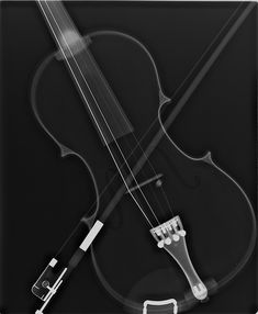 Violin xray, love it!  50 Beautiful Shots of X-Ray Photography