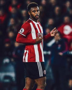 Le Moose 🏴☠️ Sheffield United, Best Football Team, Moose, Red And White, The Unit, Elk