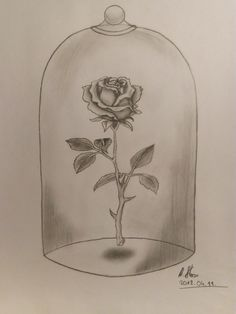 Rose in glass dome - pencil drawing