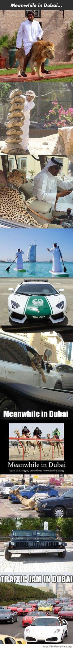 Cool meanwhile in Dubai