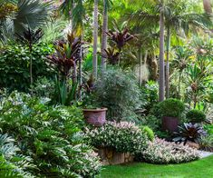 tropical garden Take a journey through an inspiring, lushly planted garden on a large sloping site. Tropical Garden Design, Tropical Backyard, Garden Landscape Design, Landscape Plans, Large Backyard Landscaping, Tropical Landscaping, Landscaping With Rocks, Landscaping Ideas, Acreage Landscaping