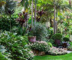 Journey through an inspiring, lushly planted garden.