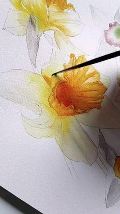 This beautiful detailed floral watercolour painting shows the step by step watercolour process that I use to paint daffodils for a client's small luxury destination wedding elopement to Ireland for a wild and colourful country wedding. Watercolor Illustration, Watercolour Painting, Floral Watercolor, Painted Leaves, Hand Painted, Step By Step Watercolor, Canvas Painting Tutorials, Watercolor Invitations, Watercolours
