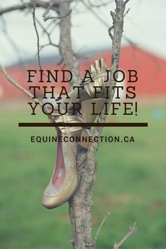 Do you have a passion and purpose for working with horses and people? Then look no further! This career is for you! Experience a different side of horse business in equine assisted learning. No riding is involved in these 'objectively driven' programs and the horse is always the teacher. Don't wait to make YOUR dreams/goals a reality! #equineconnection #dreamcareer @ealacademy