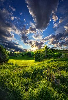 """You Raise Me Up to More Than I Can Be "" - Phil Koch"