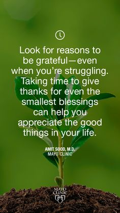Look for reasons to be grateful.