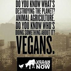 ✌✌✌ #vegan #Vegancommunity #rpvegancommunity #govegan #peta #pet #yoga #like #Veganfoodlovers #veganfood #veganrecipe #veganrecipes #fatloss #fatfree #fat #Vegetarian #VeganFitness #Veganismu #veganhawaii #veganjapan #veganmanila #veganhongkong #veganasia #veganoceania #veganrecipe #veganfoodshare #veganfoodlovers #plantbased #vegan #vegansofIG #whatveganseat ★ ★ ★ ★ ★ ★ Rp @veganfuturenow