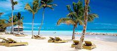 Beach Paradise.