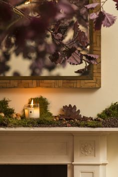 The embracing scent of autumn. Our English Oak & Redcurrant Candle takes centre stage at the Jo Malone London Townhouse. Center Stage, Centre, London Townhouse, Jo Malone, Fragrances, Earthy, English, Lingerie, Autumn