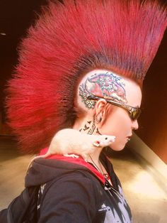 At the Emergency vet Saying goodbye to one of my beloved animals… i.o, my female dumbo rat has lived a good years. She's been one of the sweetest rats anyone could ask for. Punk Rock Girls, Punk Boy, Goth Girls, Photo Rock, Punk Mohawk, Grunge, Indie, Rocker Look, Punks Not Dead