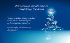 Wesołych Świąt Bożego Narodzenia życzy Abena Polska, producent i dystrybutor pieluszek i chusteczek nawilżanych marki Bambo Nature - http://bambonature.pl/