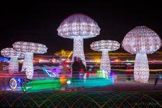 Shrumen Lumen at Burning Man 2016 (Photo by Scott London)