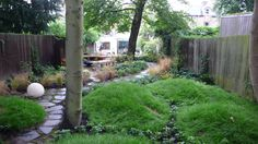 """The grove of trees at the rear of the yard was existing. Rothwell created a whimsical woodland scene using leftover soil from the project, topsoil and sand to form grassy mounds at the bases of the trees.  By London Garden Designer, """"Stars and Myths Inspire a Contemporary London Garden"""" on Houzz"""