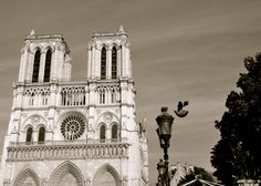 notre dame, paris, france Amazing place that I have visited