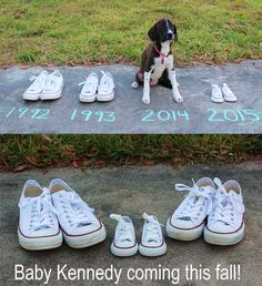 #BabyAnnouncement #Pregnancy #puppiesandbabies How we announced our first pregnancy! I was way too sick to be in any photos, so we used the cutest things we had! Our 3 1/2 month old puppy and tiny converse that matched ours!