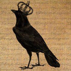 CROW Raven w Crown Black Bird Birds Digital Collage by Graphique, $1.00