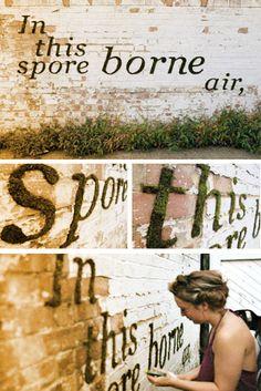DIY Wall Art Ideas -Moss Graffiti Wall Art