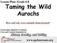 Lesson plan for 6-8 grade teaching about the domestication of animals.  Follow link for free lesson plan and teaching materials.