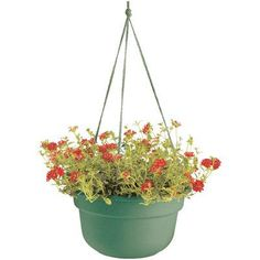August Grove Leadore Self-Watering Vinyl Hanging Planter Size: 6 H x 12.38 W x 12.38 D Color: Living Green