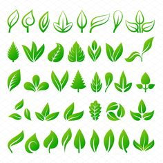 Leaf icons vector illustration by Vectorstockersland on Modelo Logo, Vector Design, Logo Design, Tea Logo, Flower Silhouette, Leaf Illustration, Leaf Drawing, Leaves Vector, Silhouette