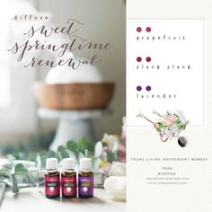 If you love to diffuse essential oils while you are cleaning, then you will love these 7 recipes that will fill the air with fresh, non-toxic pleasure- Which one is your favorite? Young Living Essential Oils