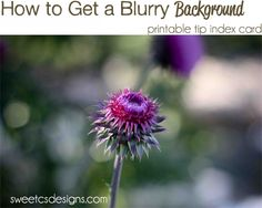 how to get a blurry background photo tips