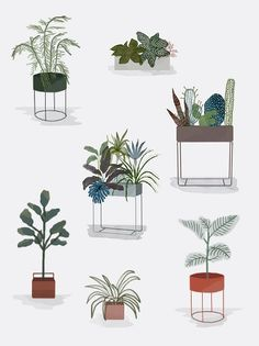 Instructions from ferm LIVING on plants in your home # Instructions Collage Architecture, Architecture People, Architecture Graphics, Architecture Drawings, Rendering Architecture, Plant Guide, Interior Plants, Gold Interior, Interior Office