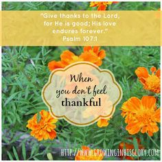 When There Doesn't Seem Like Much to be Thankful For | Growing In His Glory blog
