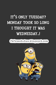 funny tuesday memes and funny tuesday morning quotes Happy Tuesday Meme, Happy Tuesday Morning, Motivational Quotes, Funny Quotes, Funny Memes, Tuesday Motivation Quotes, Its Only Tuesday, Morning Quotes, Daily Quotes