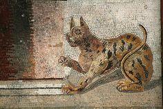 Кошки и котята - Древнеримские мозаики - Эфес, Стамбул, Мадаба, Неаполь, Пафос, Помпеи, Сицилия, Тунис | Мозаика Искусство Источник