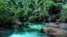 Costa Rica Rainforest | rainforest-costa-rica-trees-rocks-forest-america-s-716050.jpg
