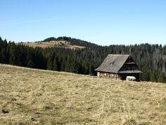 Turbacz- Gorce