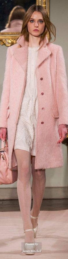 Blugirl Collection Fall 2014 Ready-to-Wear