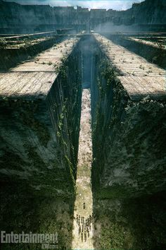 "official image for ""The Maze Runner"" o my..."