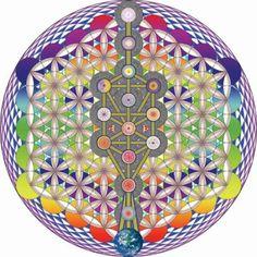 The tree of life #hexagons #rainbow #mandala