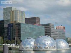 Kop van Zuid/Rotterdam.