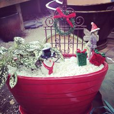 Isn't this a cute mini garden all decked out for winter?