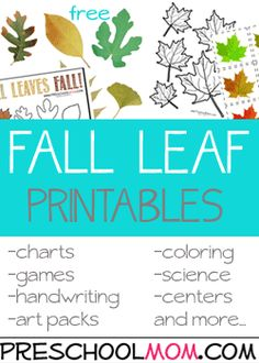 Our Autumn resources help you plan out your leafy learning centers and classroom activities. Fall is a great time to sneak in some hands on discovery, take a nature walk and collect samples of God's beautiful creation! On your nature walk point out the changes during the Autumn season, the colors of the leaves, squirrels …