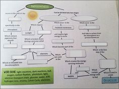 009 cell respiration sudy guide b1 Science Time Pinterest