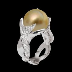 L'histoire de la perle Gold :  La perle Gold, aussi appelée perle des mers du sud, sont issues de la Pinctada Maxima à lèvre dorée.