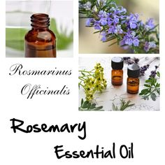 Rosemary Essential Oil by forever-changing on Polyvore featuring beauty